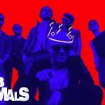 Detektivní videoklip Pub Animals