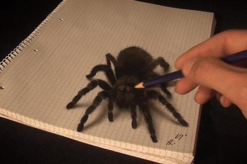 Stefan Pabst a jeho 3D kresby